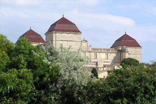 Chateau_de_Castries2.JPG