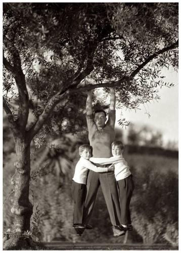 Buster Keaton suspendu à une branche d'arbre avec ses deux fils, Joseph et Robert Talmadge, vers 1931.jpg