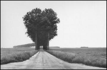 brie-1968 henri-cartier-bresson.jpg