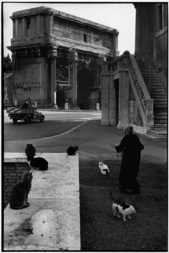Gatti (Rome 1959).jpg